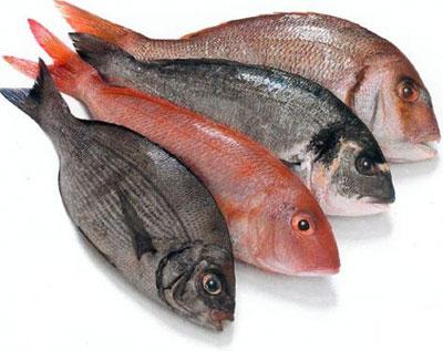 foto pescado