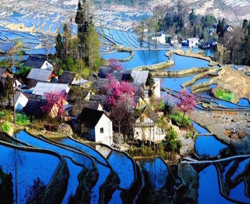 Yuanyang-rice-fields-2