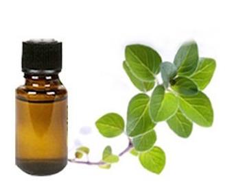 aceite-esencial-natural-de-oregano-aromaterapia