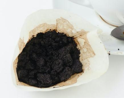 borra de cafe como abono
