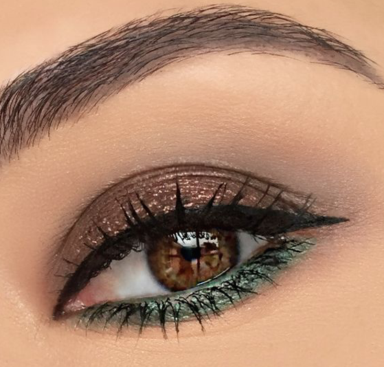maquillaje ojos pardos